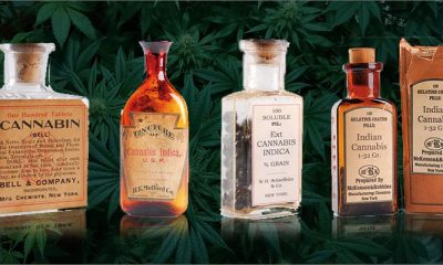 Ancient Uses for Medical Cannabis