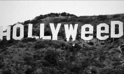 celebrities smoke weed