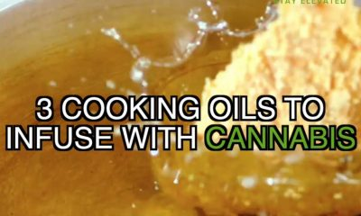 3 coocking oil to infuse with cannabis