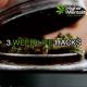 3 DIY Weed Life Hacks