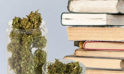 authors who smoke cannabis