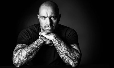 joe rogan and cannabis