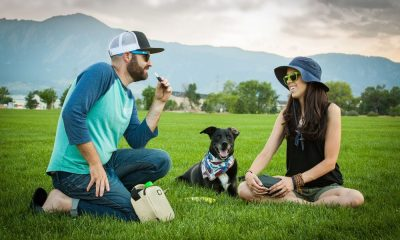 Spring into Cannabis: Picnics with Mary Jane
