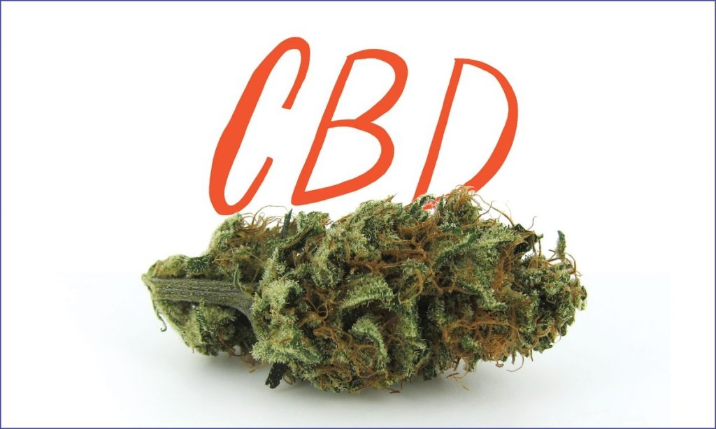 CBD Strains and Why They are Beneficial to Your Health