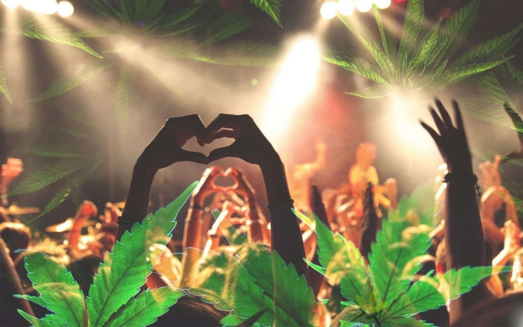 Cannabis Music Festivals – What You Need to Know