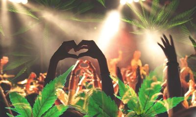 cannabis music festivals
