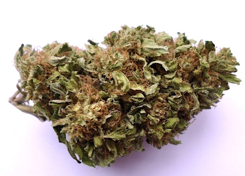Blue Cheese - the best weed strains for sex