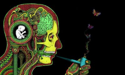 cannabis and music