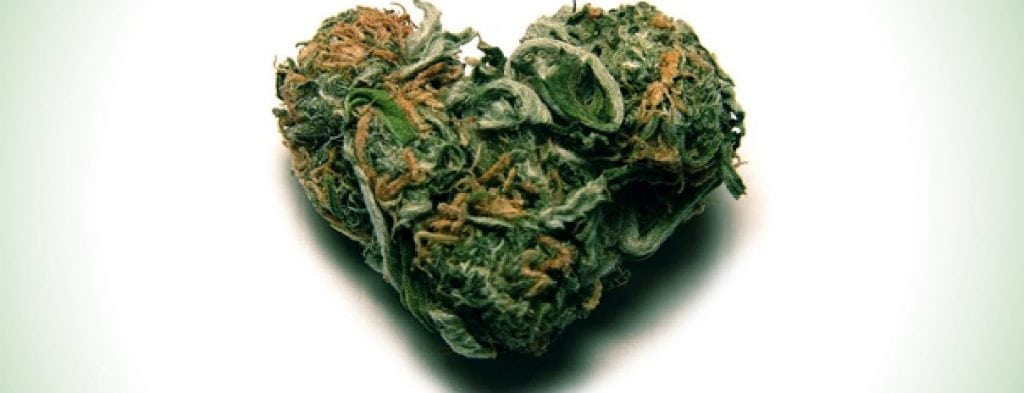 cannabis and your heart