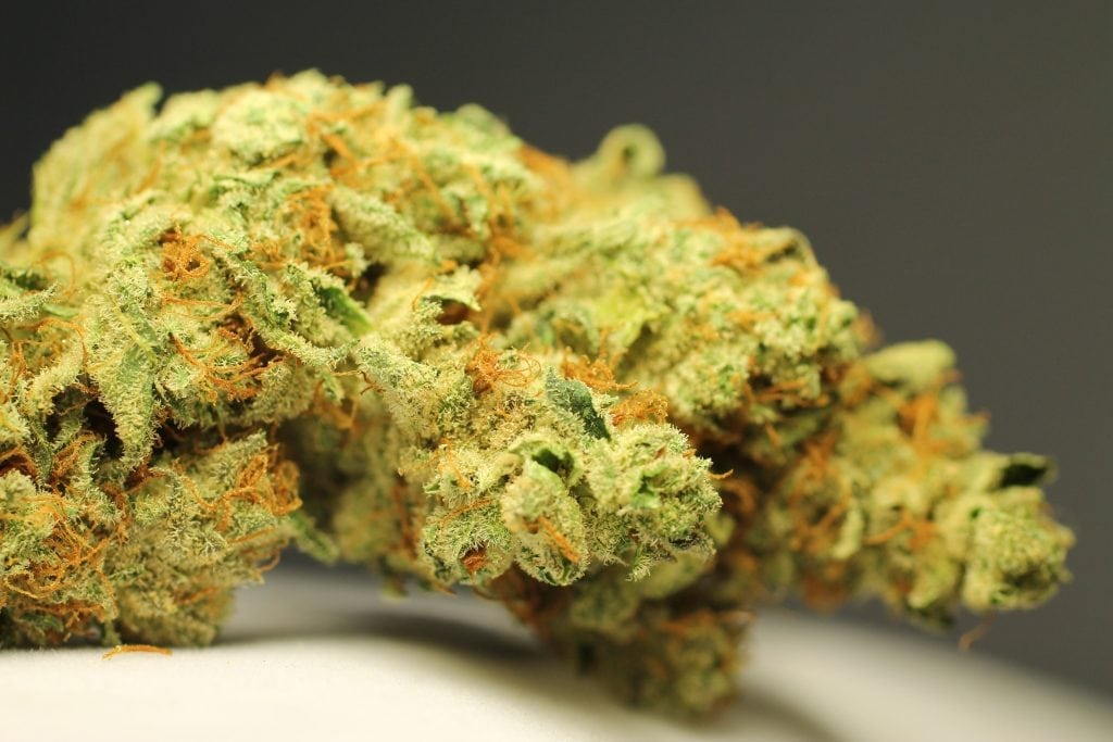Tangerine Sunrise and Marijuana Margaritas
