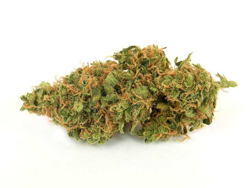 Lemon OG: What Is a Lemon OG Strain?