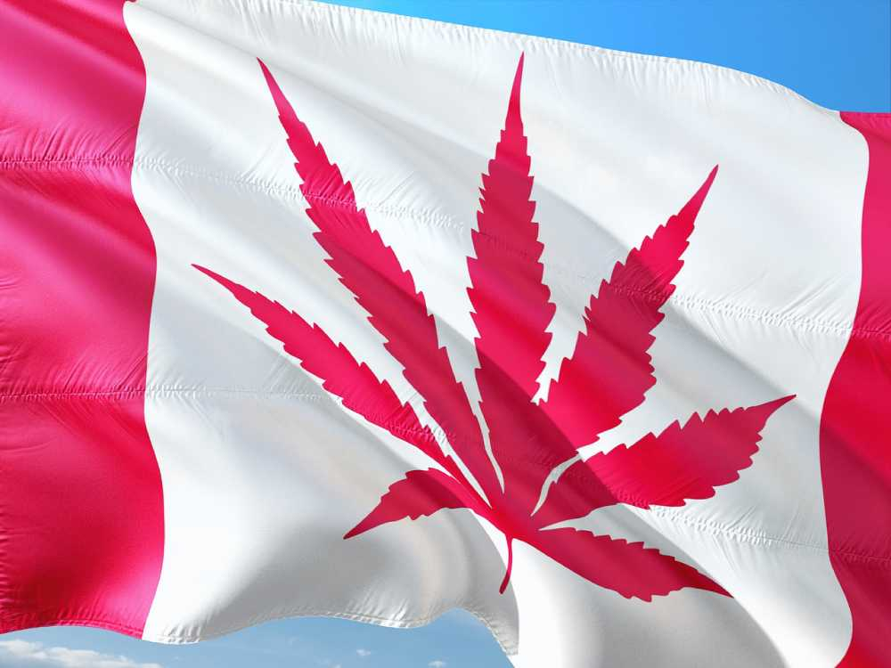 Cannabis Tourism in Vancouver Canada
