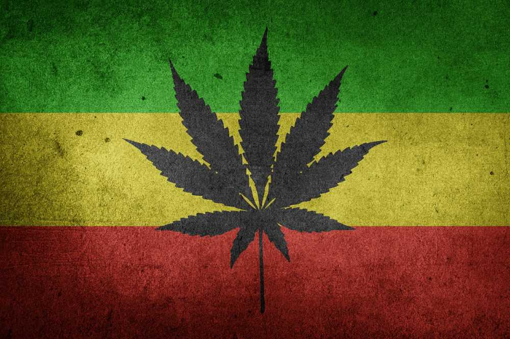 marijuana in Kingston Jamaica