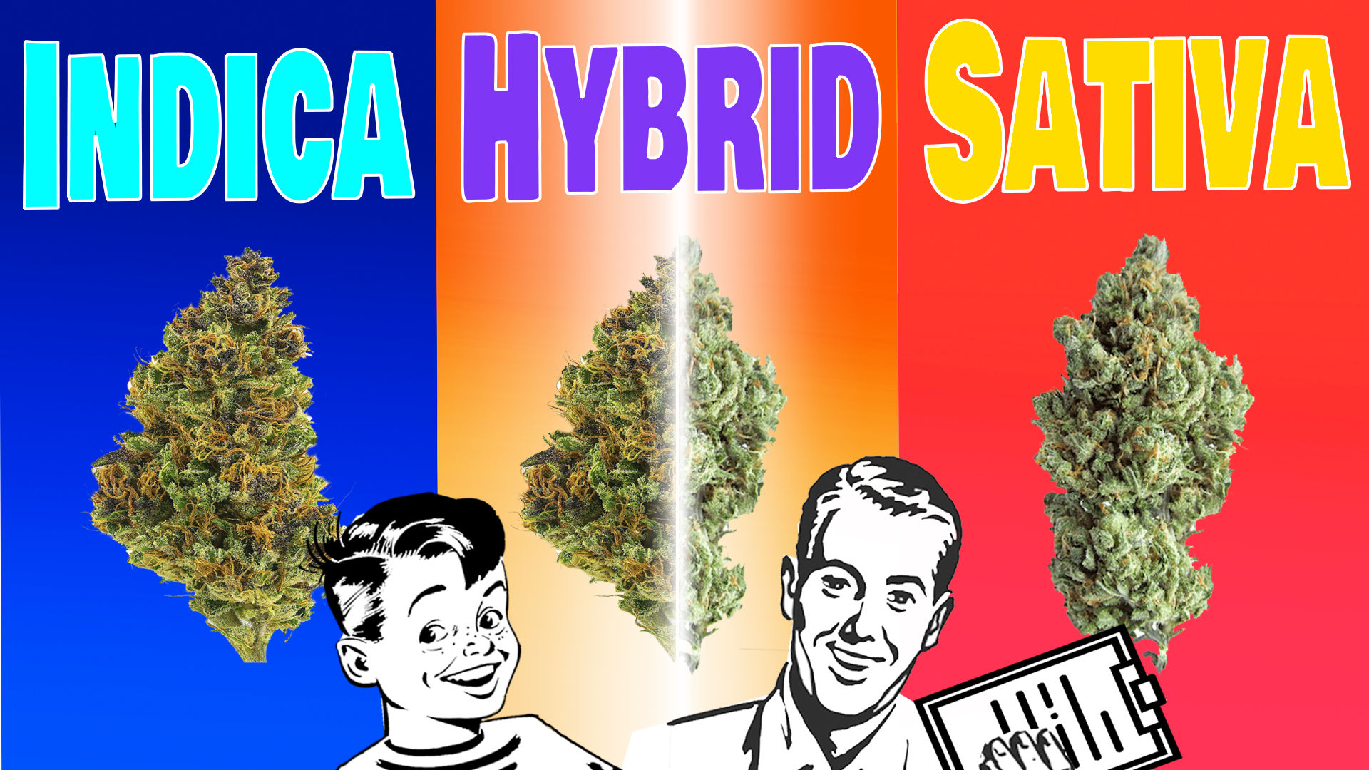 Reefer Madness Returns – Strains! – Anti-Marijuana Propaganda – What You Don't Know!