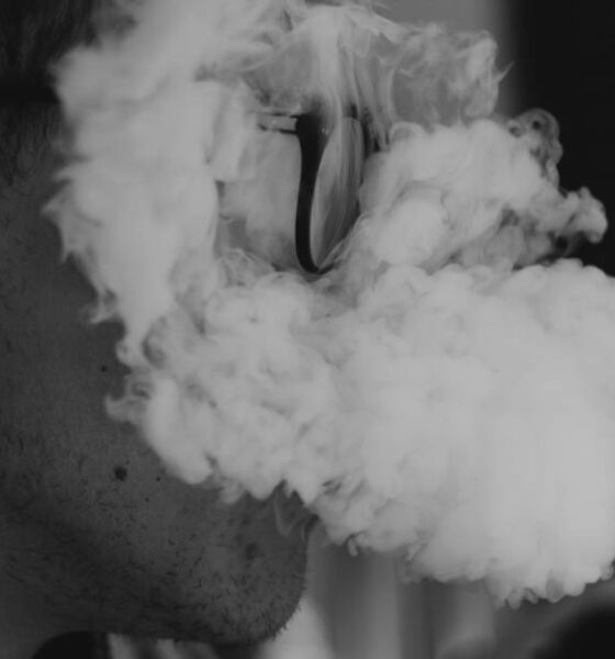 How Do Dry Herb Vaporizers Work