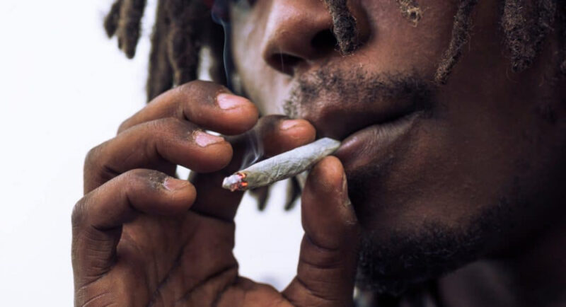 Odourless Weed: Trend or Hype?