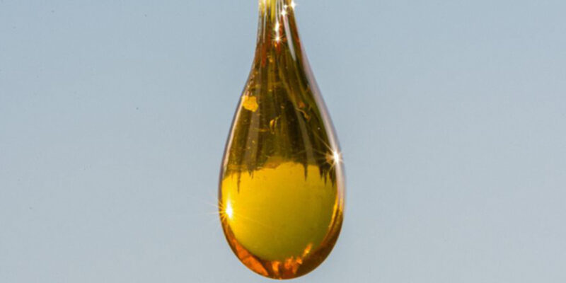 Hemp Oil – The Benefits, Uses, History and more