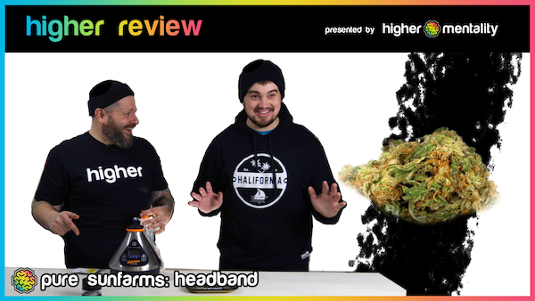 higher review pure farms head band